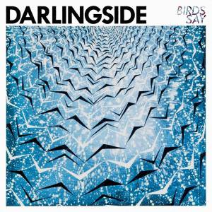 Darlingside_BirdsSay